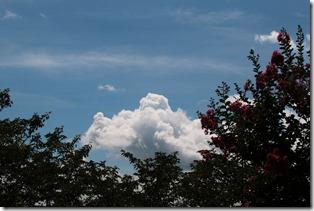 雲_2020_08_09_03
